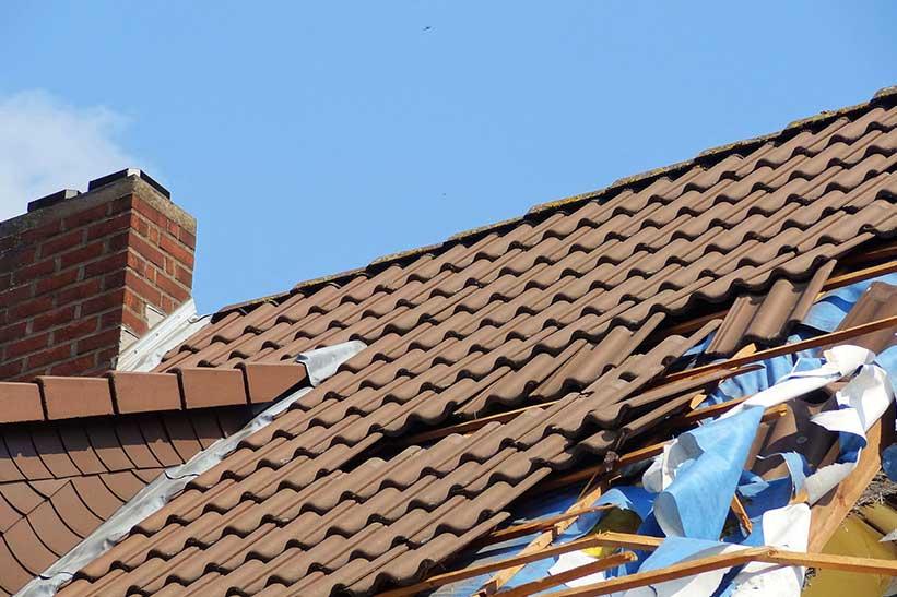 damaged roof summer auckland